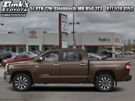 2019 Toyota Tundra 1794 Edition Package